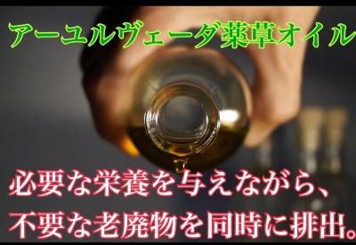 IMG_2690.jpeg